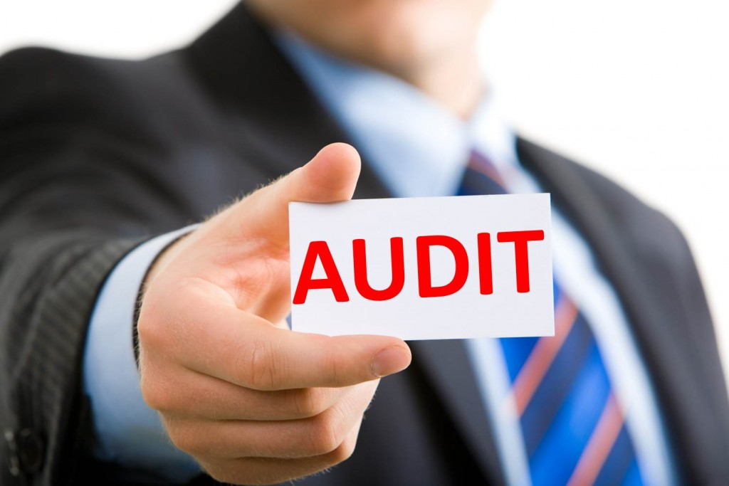 What do I do in the case that I am audited?